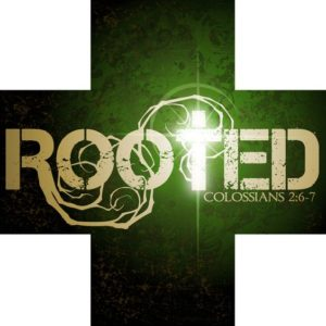 Rooted Cell Group